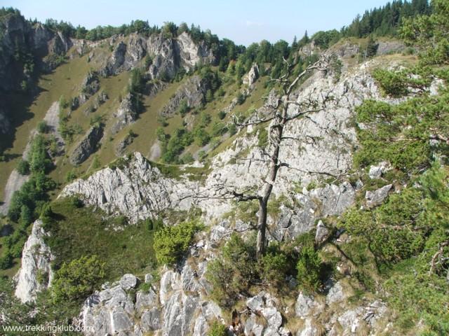 4510 - Bélavár
