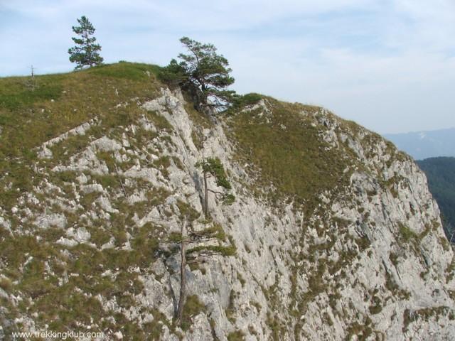 4551 - Bélavár