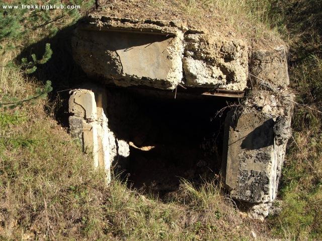 Buncarul de langa sosea - Cetatea Bufnitei