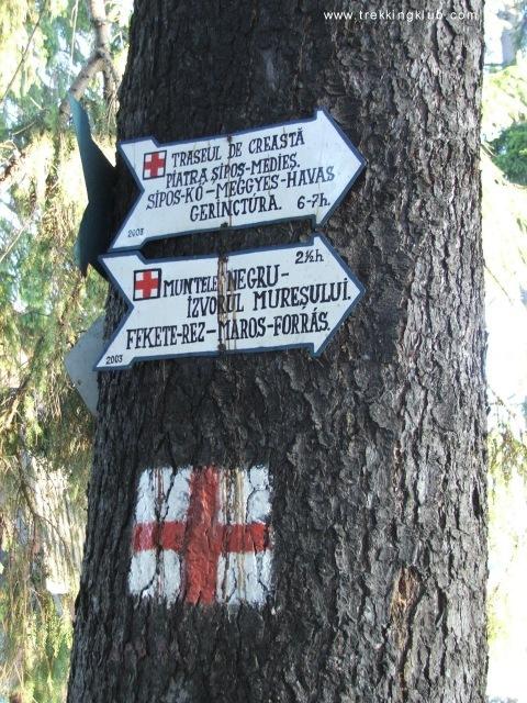 Indicatorul turistic din gara Izvoru Muresului - Muntele Negru