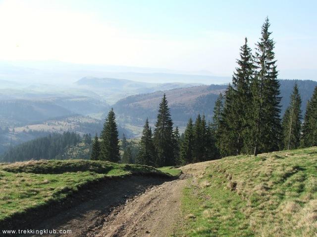 Fagul Mic and Dealul Gorodisului - Black Mountain