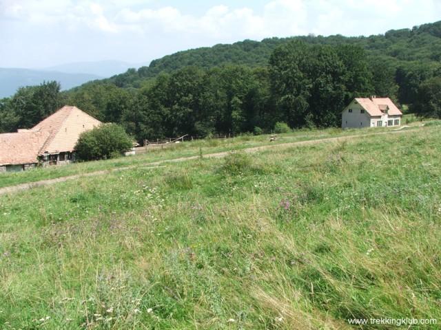 Salasul Hollós - Varful Becheci