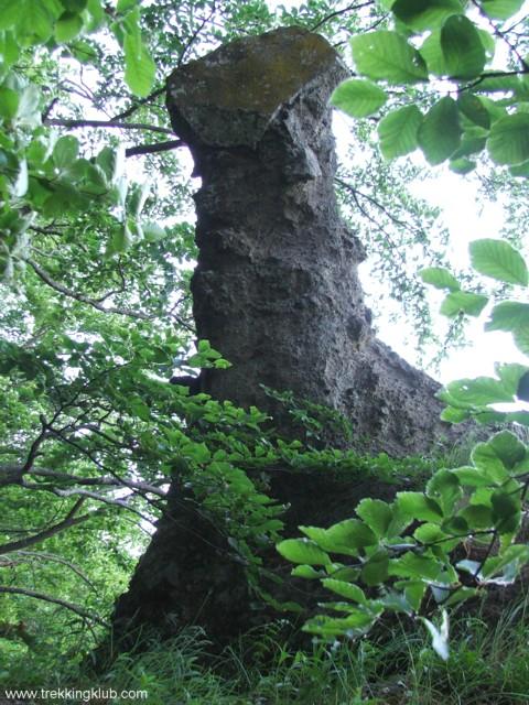 2319 - Siclod Stone
