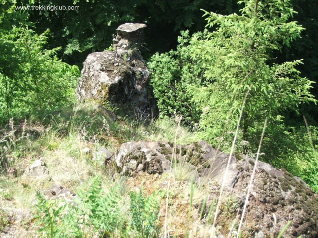 2340 - Shepherd Stone