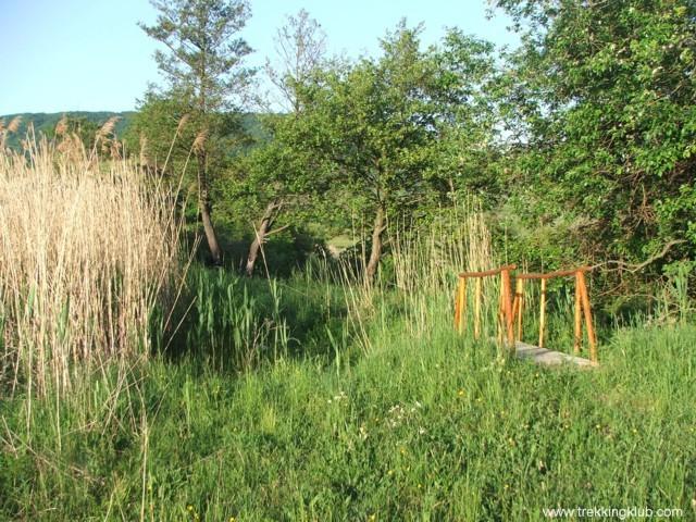 Bejárat - Rák-tava