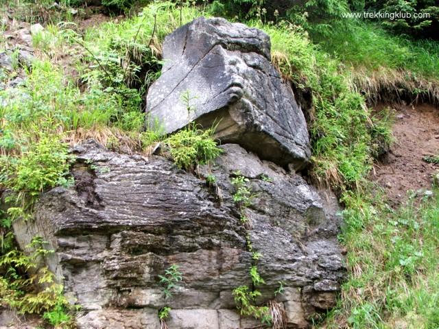 Szikla - Málnavész sziklái