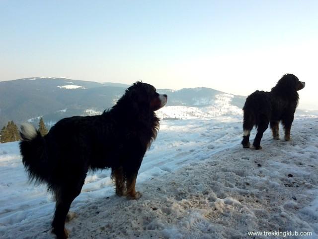 Gemeni - Piatra Mica a Bufnitei