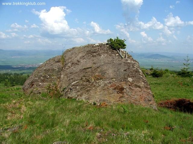 Claia de piatra - Piatra Tabulata