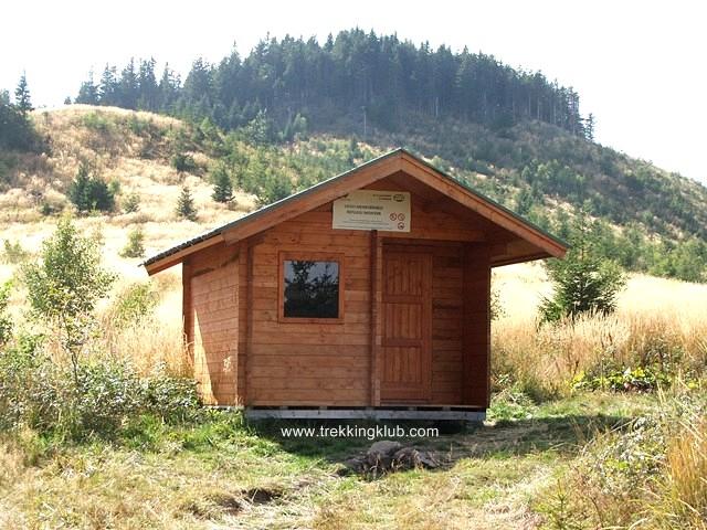 In fundal se vede Muntele Cucu - Muntele Cucu