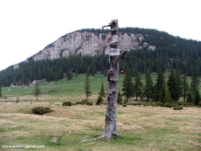 Indicatorul turistic din Poiana Alba - Piatra Potcoavei