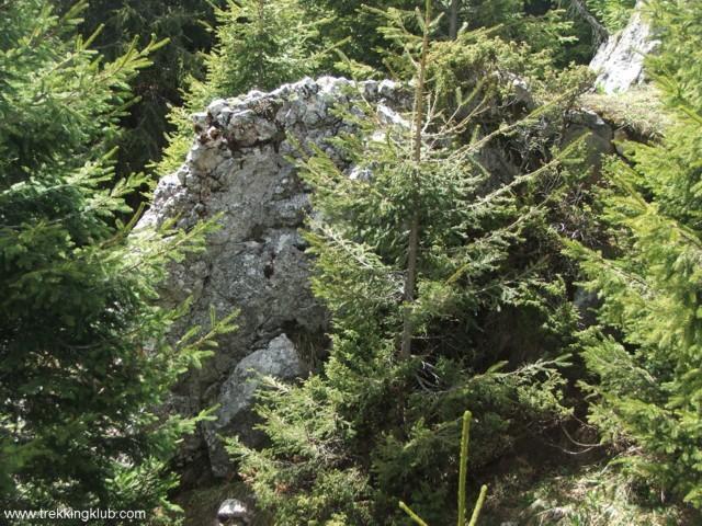 A csúcs melletti szikla - Likas-zsomboly