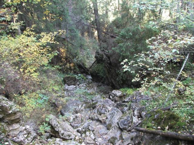 Coborare in valea paraului Lazar din spatele Pietrei Singuratice - Paraul Lazar