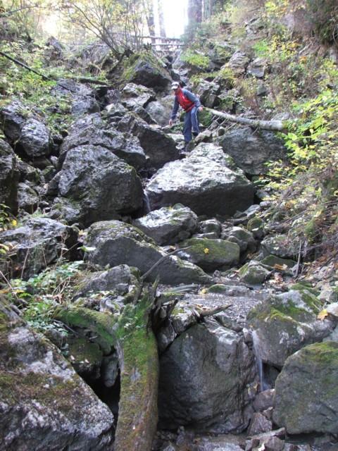 Hatalmas kőtömbök a Lázár-patak felső részében - Lázár-patak