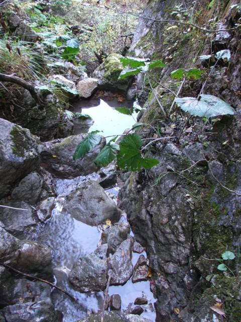 Portiune ingusta din valea paraului Lazar - Paraul Lazar