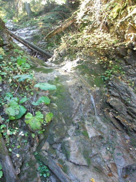 Valea paraului Lazar - Paraul Lazar