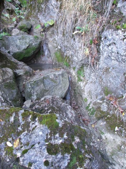 Trepte de piatra pe paraul Lazar - Paraul Lazar