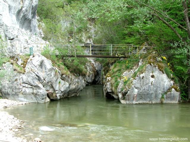 The bridge - Corcoaia Gorges