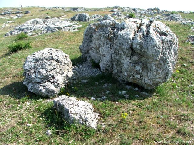 1533 - Lapiez fields
