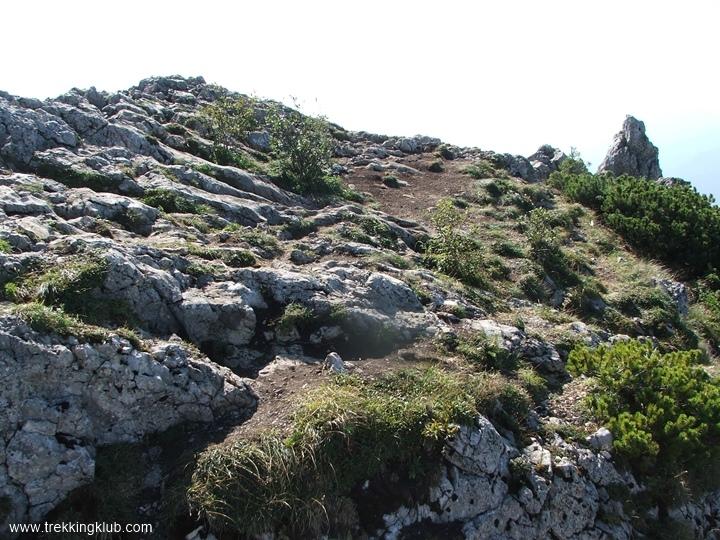 A szikla teteje - Fejedelemasszony kövei