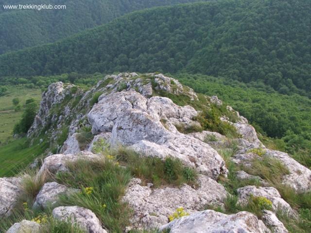 1058 - Piatra Craivii