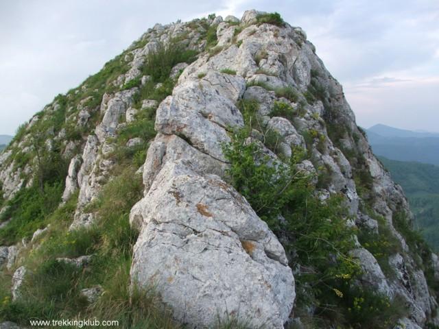 1059 - Piatra Craivii