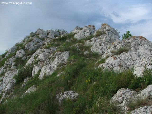 1063 - Piatra Craivii